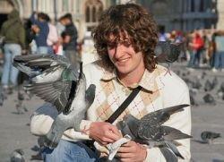 В Венеции официально запретят кормить голубей