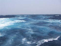 49-летняя американка плавала в океане 19 часов