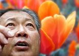 В Киргизии – нетюльпановая недореволюция