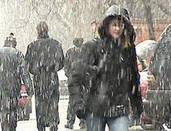Скандал с поставками реагентов: Москва зимой превратится в один большой каток