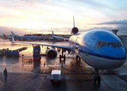 Летать опасно: халатность в аэропортах увеличивает угрозу терактов