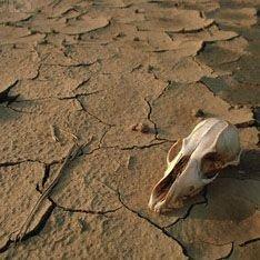 Через сто лет Земля опустеет