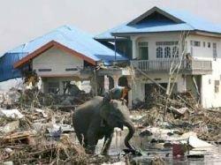 Возле Суматры произошло землетрясение силой 7,1 балла