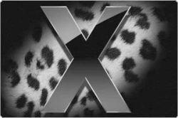 """Крупнейшие американские издания дали свои обзоры \""""Леопарда\"""" Mac OS x 10.5"""