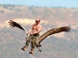 Новость на Newsland: Михаил Задорнов. Путин и журавли