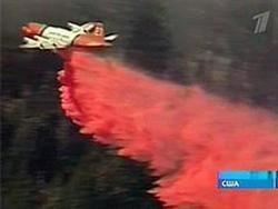 Лесные пожары в Калифорнии начали утихать