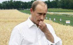 Творческие люди разошлись во взглядах на Владимира Путина