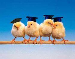 Взрослый выбор: жить ли в родительском доме после окончания вуза?