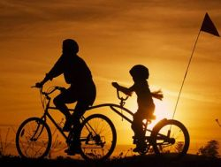 Велосипеды на Гавайях смертельно опасны