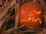 Опрос: о Хэллоуине знает половина россиян, а праздновать его будут пять процентов