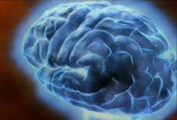 На протяжении жизни мозг мужчин постепенно уменьшается в размерах