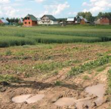 Право собственности на землю можно будет получить, не уточняя границы данного участка