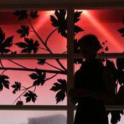 Компания Philips представила интерактивное окно для гостиниц
