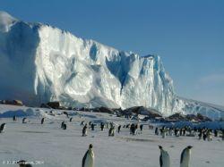 Китай исследует Антарктиду