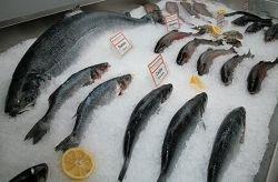 Чиновники пытаются снизить цены на морепродукты