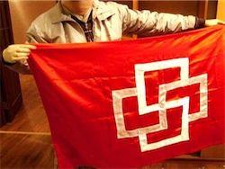 ГД ужесточила наказание за демонстрацию экстремистской символики