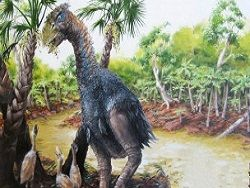 Новость на Newsland: Ученые: гигантская птица была