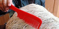 Необычные факты: в Китае был найден камень, на котором растут волосы