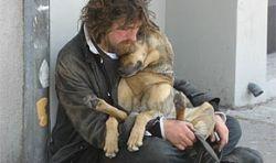 Четверть американских бездомных – бывшие ветераны