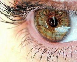 Ученые нашли идеальный материал для искусственной роговицы глаза