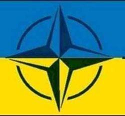 Натовский ликбез станет украинцам в $6 млн.