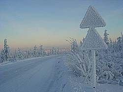 Пять простых советов начинающим водителям о том, как пережить зиму