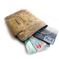 На кредитную карту поставлен процент: плюсы и минусы кредитных карт