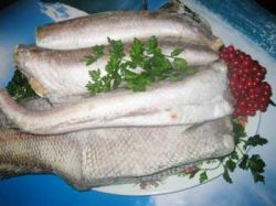 Рыба - лучшая еда для мозга