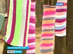 Деревья в Измайловской парке получили необычную одежду