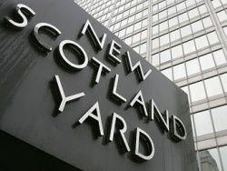 В Лондоне более 260 человек задержали за домашнее насилие