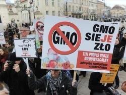 Сенат Польши одобрил ГМО