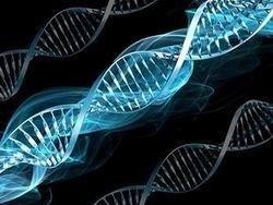 В Евросоюзе впервые разрешена генная терапия