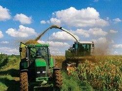 Почему в Белоруссии не развито органическое сельское хозяйство?
