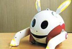 В Корее создали роботов Kobie и Rabie, выражающих эмоции