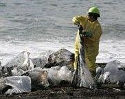 Из-за разлива нефти в бухте Сан-Франциско объявлено чрезвычайное положение