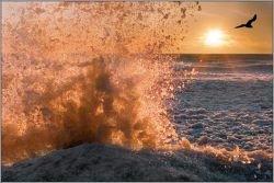 """В районе порта \""""Кавказ\"""" в Азовском море терпят бедствие уже пять судов"""
