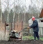 Депутаты упростили оформление в собственность дачных и садовых участков