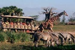 Журнал Forbes Traveler назвал лучшие зоопарки мира