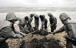Азовское море станет мертвым?