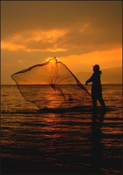 Арнольд Шварценеггер запретил ловить рыбу в Сан-Франциско