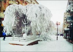 Из-за снегопада в Москве за сутки произошло две тысячи ДТП