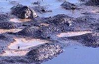 Япония готова помочь в ликвидации последствий катастрофы в Керченском проливе