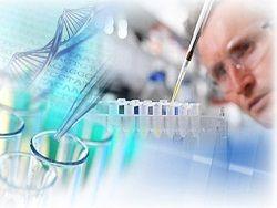 Новость на Newsland: Что на самом деле говорит наука о существовании Бога