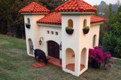 Дома для собак класса люкс (фото)