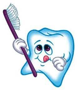 Все, что полезно для зубов
