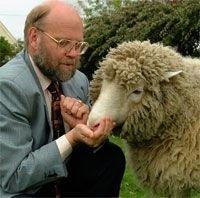 Создатель овцы Долли Иэн Вильмут отказывается от клонирования человеческого эмбриона из стволовых клеток