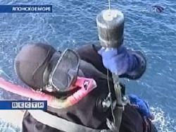 """В Японском море спасены 35 человек с затонувшего сухогруза \""""Кастор-1\"""""""