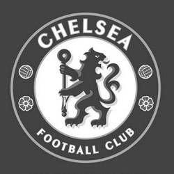 Исполнительный директор «Челси» Питер Кеньон не подтвердил информацию о переходе Бранислава Ивановича и Динияра Билялетдинова
