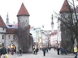 В Эстонии выберут самый красивый язык в мире