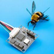 Поведение пчёл поможет координировать работу интернет-серверов